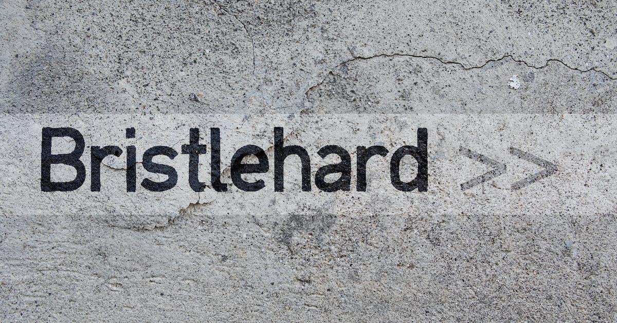 Download Bristlehard by aarleykaiven
