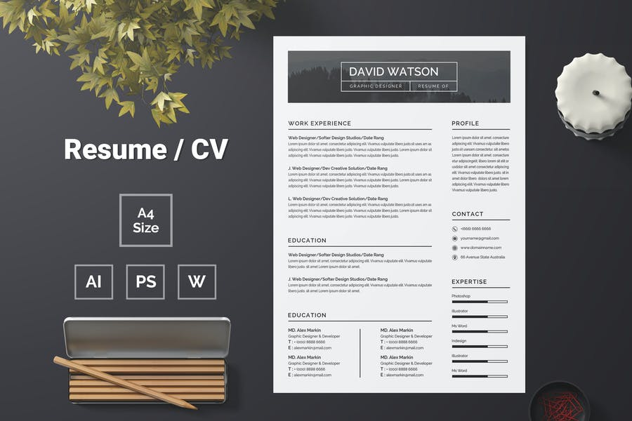 Resume Template 72