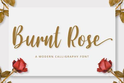 Calligraphy/Cursive Font