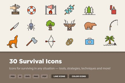 30 Überlebens-Icons