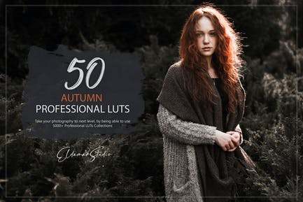 50 Autumn Forest LUTs Pack