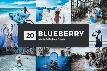 20 Blueberry Lightroom Presets & LUTs