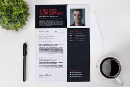 Professional Architect CV Resume