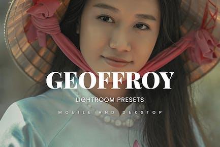 Geoffroy Lightroom Presets Dekstop and Mobile
