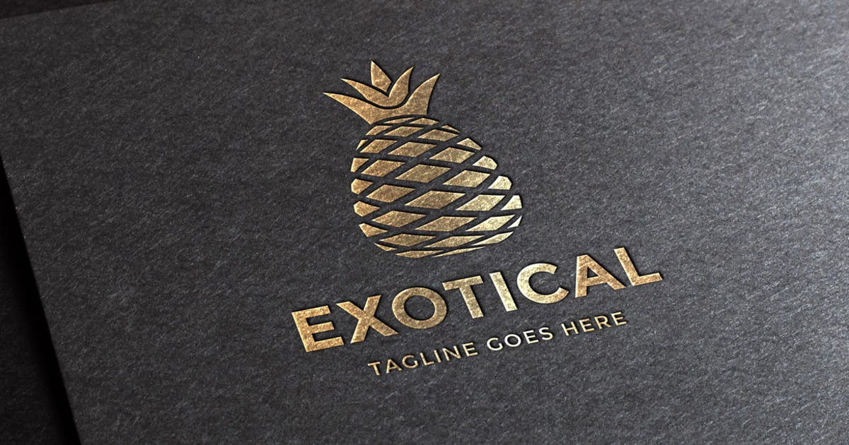 Download Exotical Logo Template by empativo