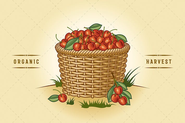 Thumbnail for Retro Basket Of Cherries