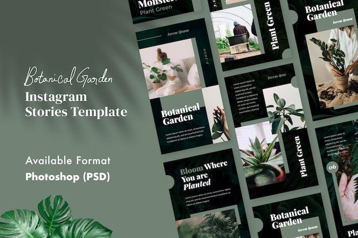 Thumbnail for Botanical Garden Instagram Stories Template