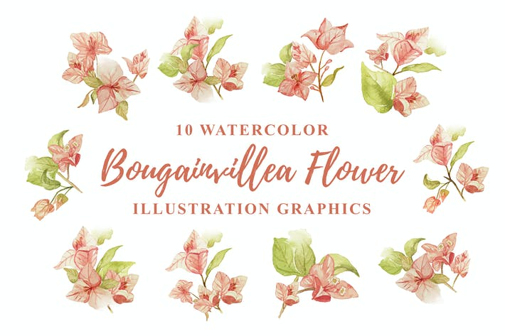 Thumbnail for 10 Aquarell Bougainvillea Blume Illustration