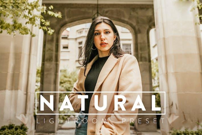10 предустановок Natural Lightroom