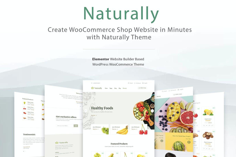 Elementor WooCommerce WordPress Theme - Naturally