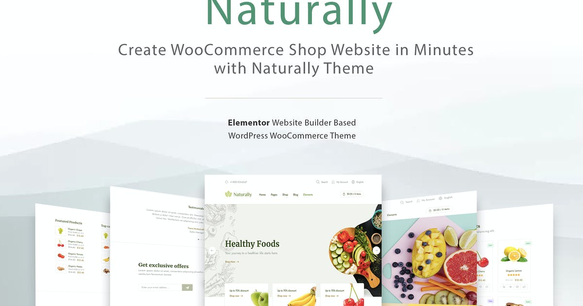Download Elementor WooCommerce Shop Theme - Naturally by Ninetheme