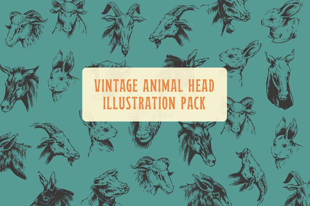 Animal Head Vintage Illustration