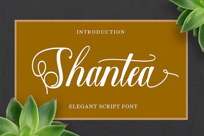 Thumbnail for Shantea Script