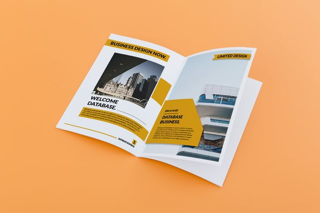Database - Business Brochure 12 pages