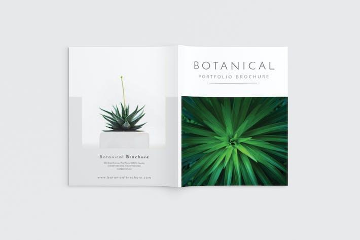 Thumbnail for Botanical Portfolio