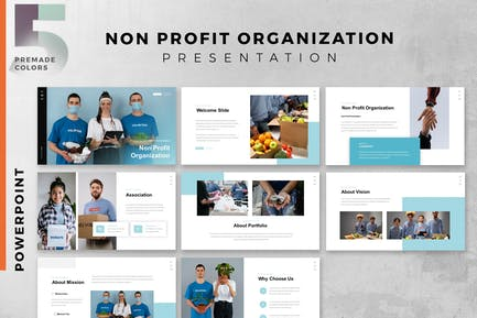 NGO - non-governmental organizations