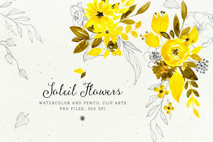 Thumbnail for Soleil Flowers