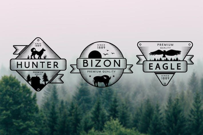 Thumbnail for 3 Vintage Adventure Badges
