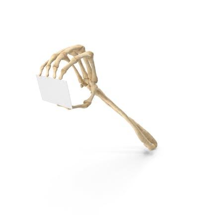 Mano esqueleto sosteniendo una tarjeta en blanco