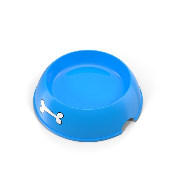 Empty Dog Food Bowl