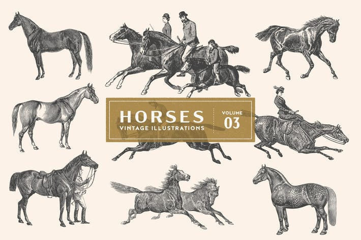 Thumbnail for Vintage Horse Illustrations Vol. 3
