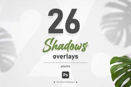 Plant Shadow Overlays