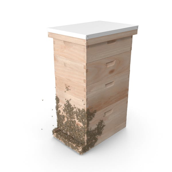 Wooden Beehive Brood Box with Bees