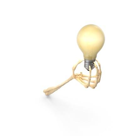 Skeleton Hand Holding a Light Bulb Turned On