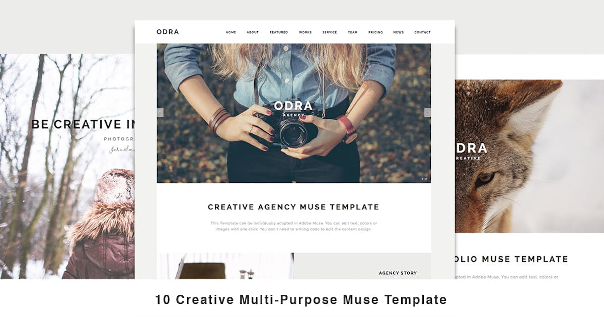 Download ODRA - 10 Creative Muse Templates Multi-Purpose by MuseFrame