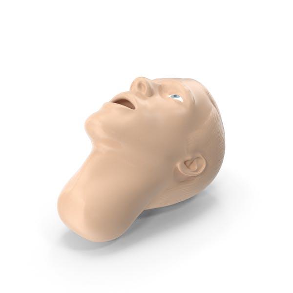 Manikin Head