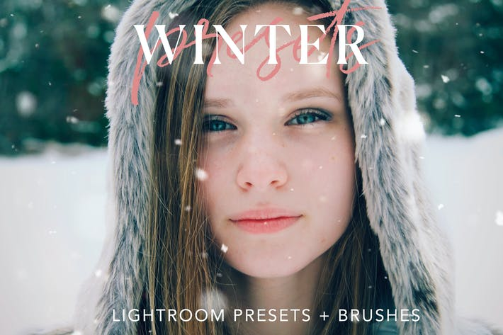 Thumbnail for Winter Lightroom presets + Brushes