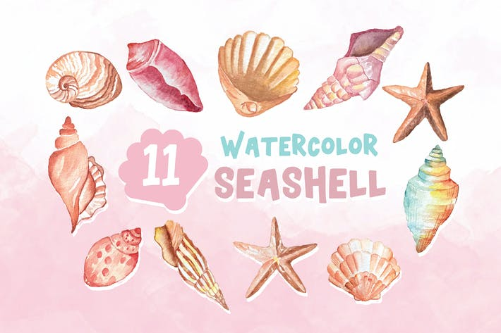 Thumbnail for 11 Watercolor Seashell Illustration Graphics