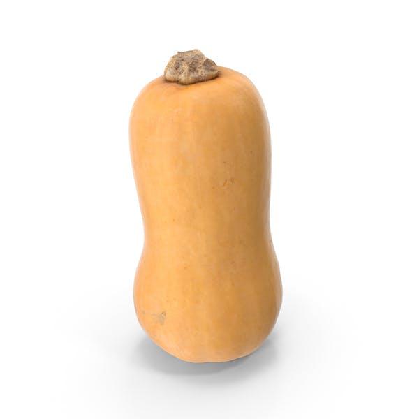 Thumbnail for Butternut Squash