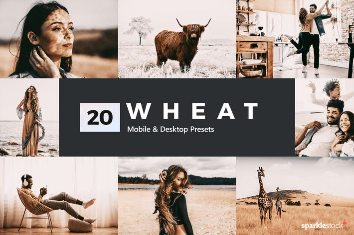 Thumbnail for 20 Wheat Lightroom Presets and LUTs