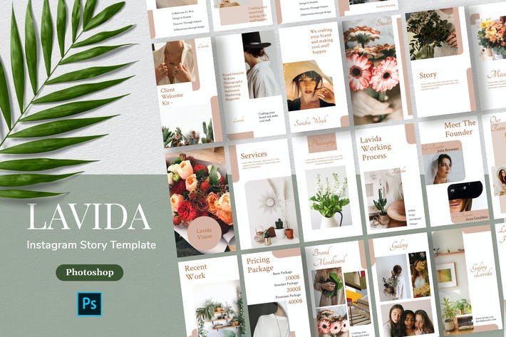 Thumbnail for Lavida - Minimalism Instagram Story Template