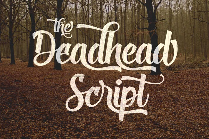 Cover Image For Deadhead Script
