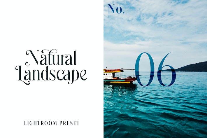 Пресет Lightroom - Природный ландшафт No.06