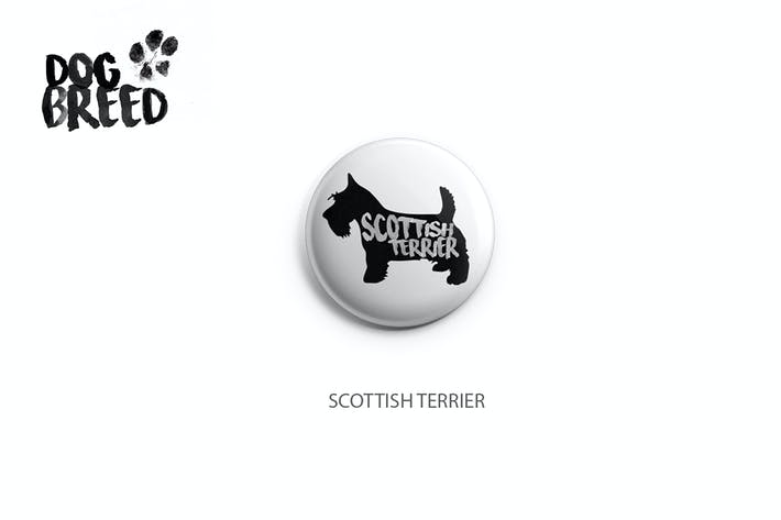 Cover Image For Scottish Terrier