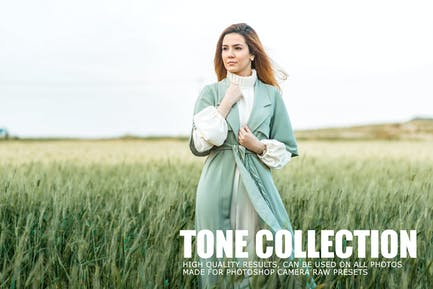 Tone Collection CameraRaw Photoshop Actions