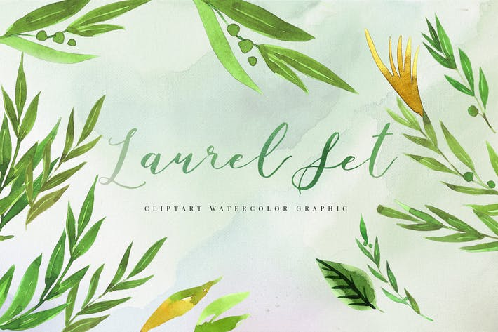 Cover Image For 30 Watercolor Laurel Set Illustration