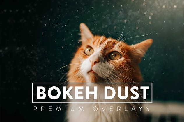30 Bokeh Dust Overlays