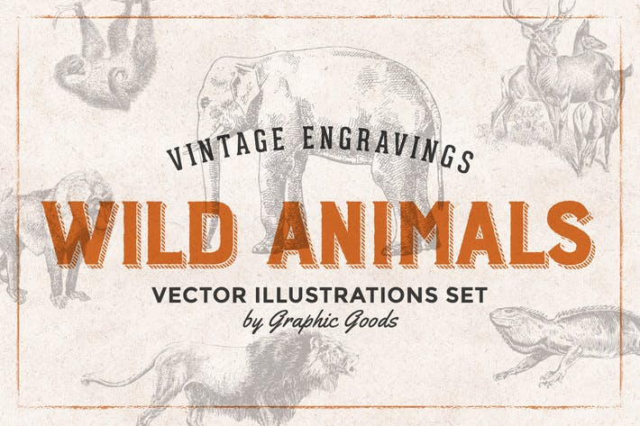 Thumbnail for Wild Animals - Engraving Illustration Set