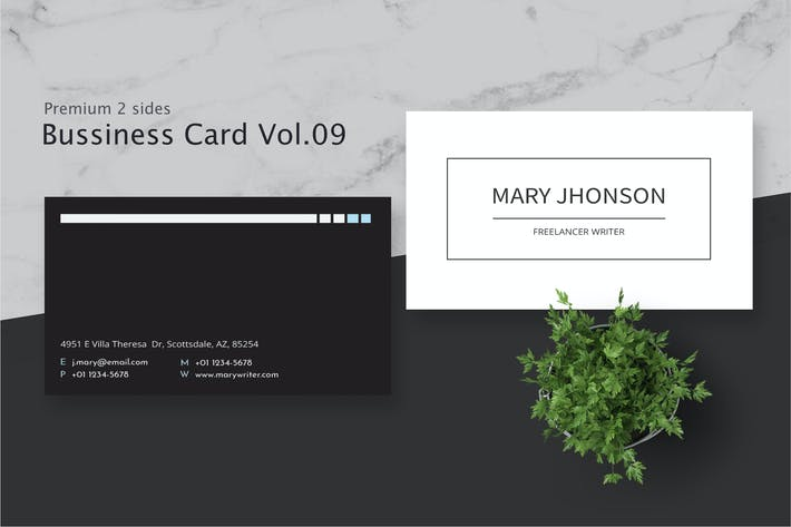 Thumbnail for Business Card Pro V.009