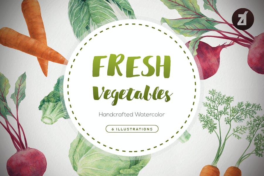 Fresh vegetables watercolor illustrations