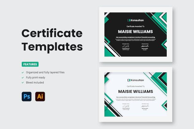 Certificate - Konsultan 2