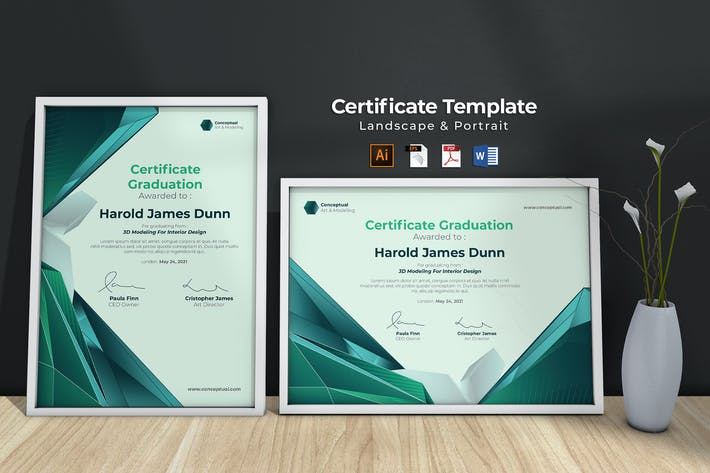 Thumbnail for Professional Certificate Template