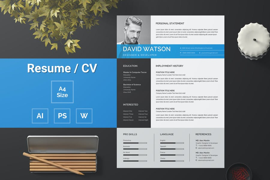 Resume Template 116