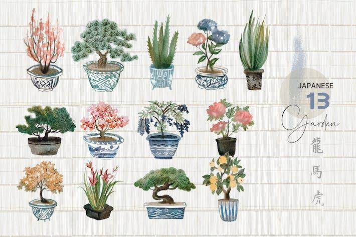 Thumbnail for Акварель японские растения - набор иллюстрации