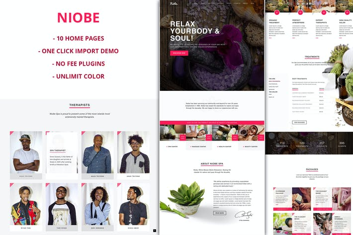 Thumbnail for Niobe - Spa & Salon WordPress Theme