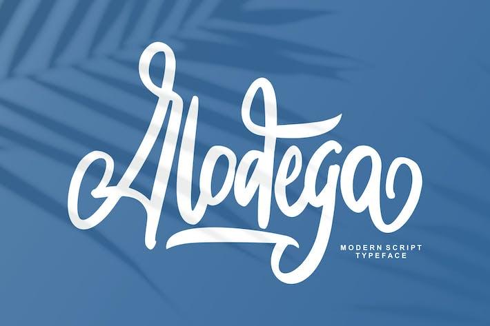 Thumbnail for Alodega Modern Script